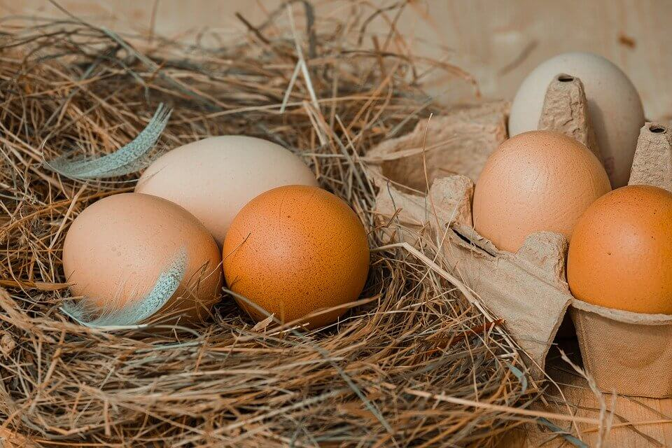 Teh Telur: Minuman Kekinian Penambah Stamina